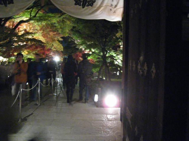 15-koyo-kyoto63.JPG