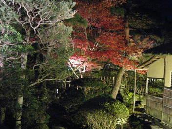 15-koyo-kyoto68.JPG