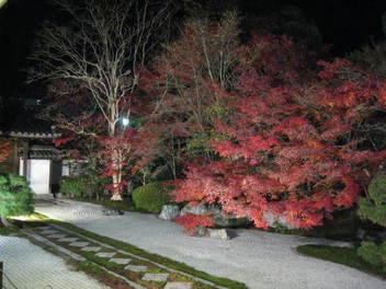 15-koyo-kyoto69.JPG