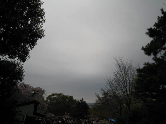 15-sakura-kyoto14.JPG