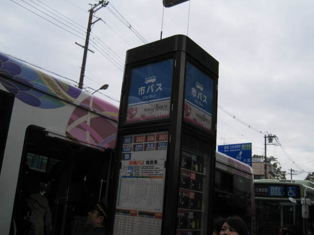 15-sakura-kyoto3.JPG