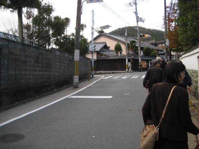 15k-koyo-kyoto20.JPG