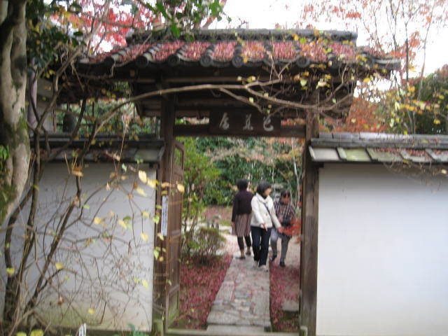 15k-koyo-kyoto37.JPG