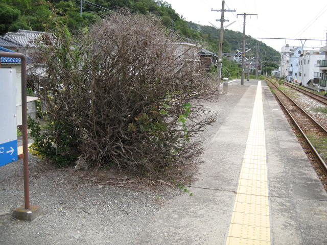 jr-hinase9.JPG