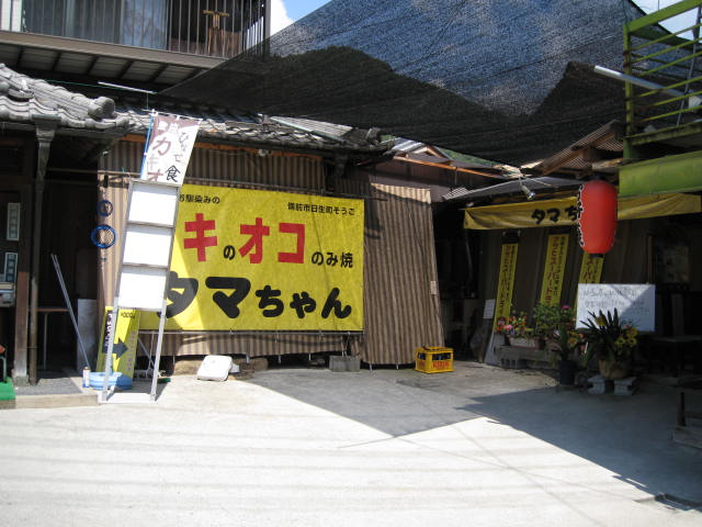 tamachan1.JPG