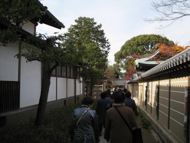 10-koyo-kyoto579.JPG