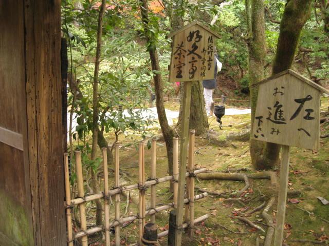 10-koyo-kyoto623.JPG