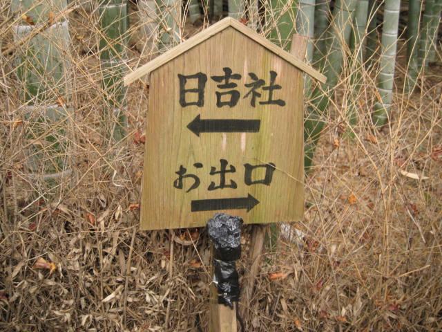 10-koyo-kyoto627.JPG