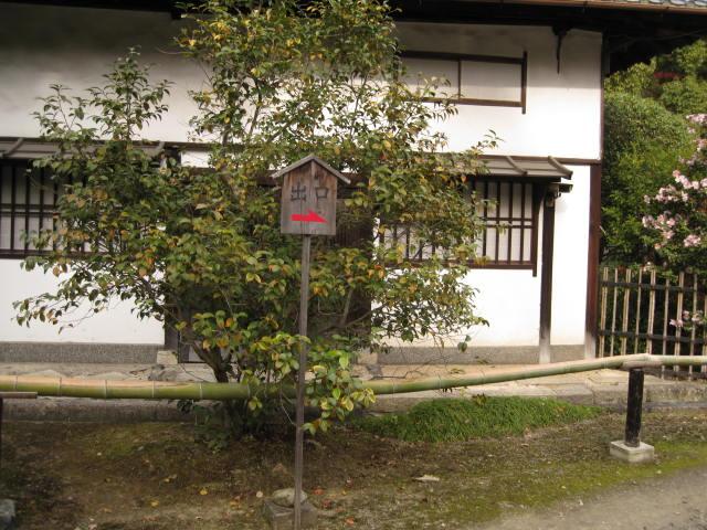 10-koyo-kyoto632.JPG