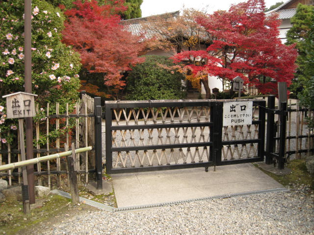 10-koyo-kyoto633.JPG