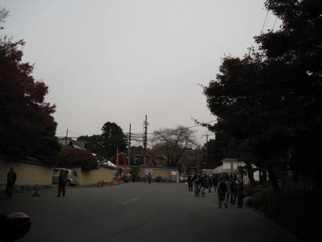 10-koyo-kyoto650.JPG