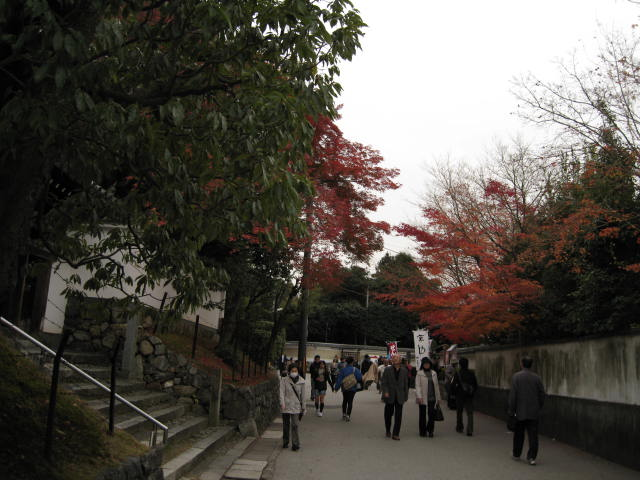 10-koyo-kyoto655.JPG