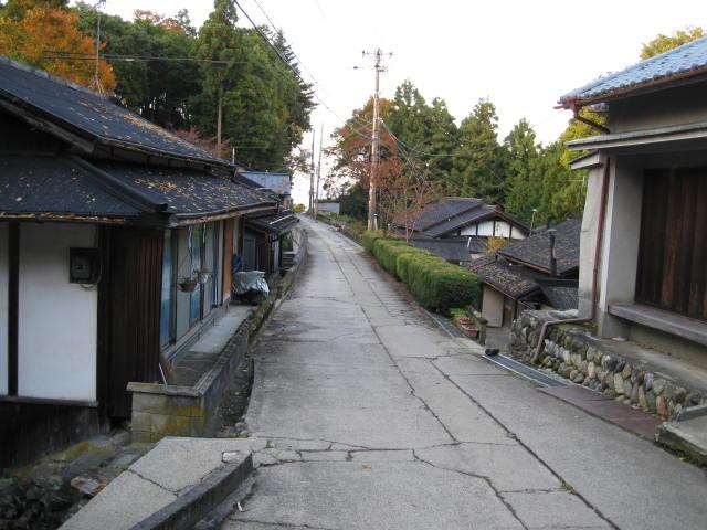 10-koyo-yoshino90.JPG