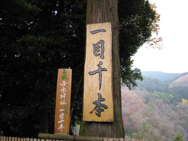 08-aki-yoshino39.JPG