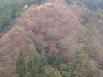 08-aki-yoshino42.JPG