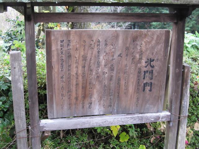 08-aki-yoshino46.JPG