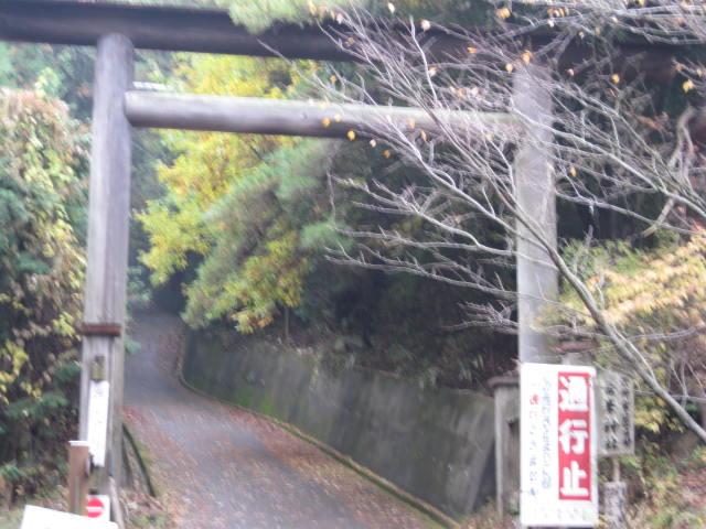 08-aki-yoshino50.JPG