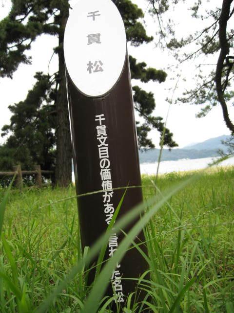 09-ama-hashi49.JPG
