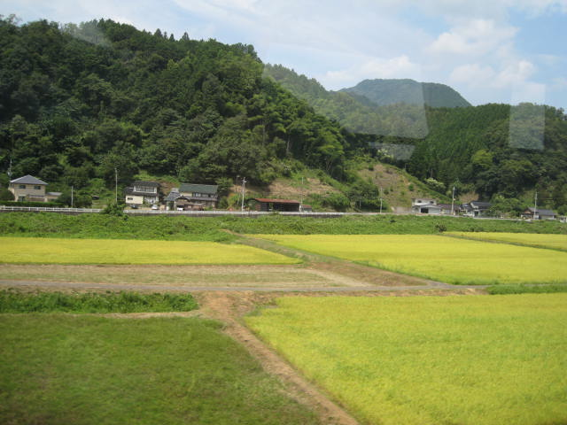 09-ama-hashi9.JPG