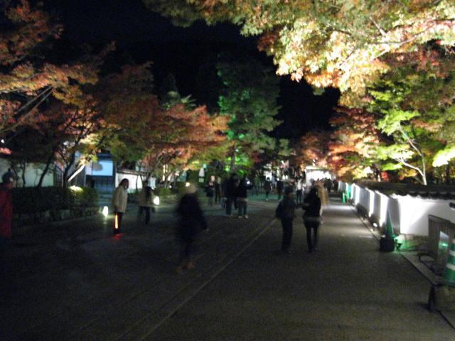 09-kyoto-koyo-122.JPG