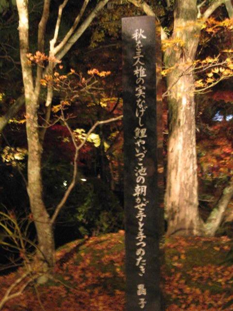 09-kyoto-koyo-160.JPG