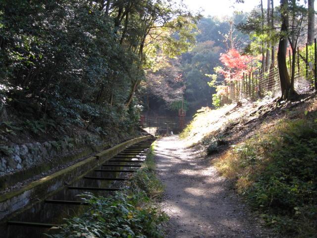 09-kyoto-koyo-212.JPG