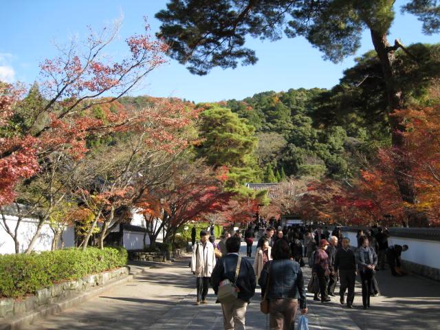 09-kyoto-koyo-257.JPG