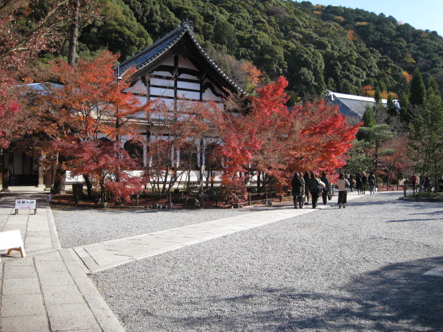 09-kyoto-koyo-261.JPG