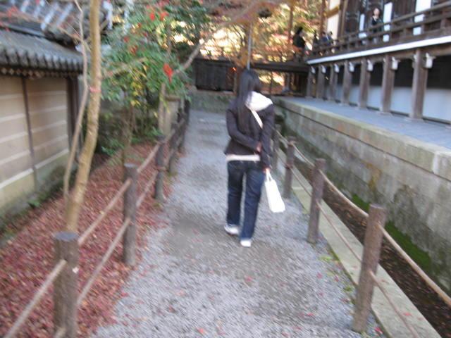 09-kyoto-koyo-274.JPG