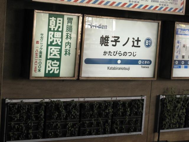 09-kyoto-koyo-58.JPG
