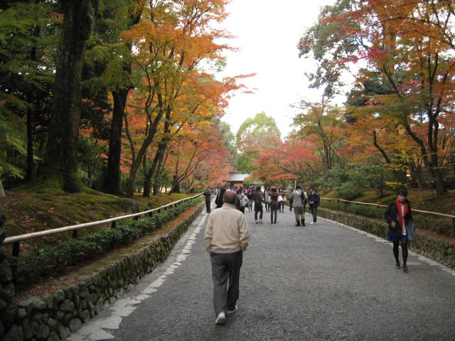 09-kyoto-koyo-63.JPG