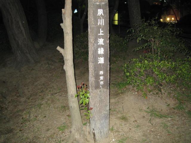 09-nig-syukugawa1.JPG