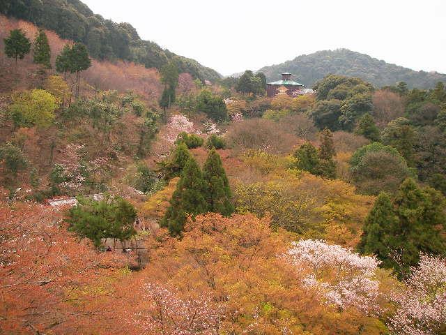 09-sp-kyoto36.JPG