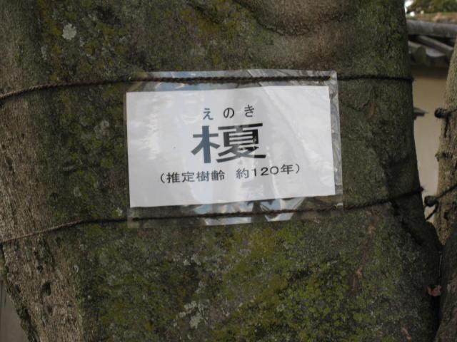 09-sp-okaban-rep60.JPG