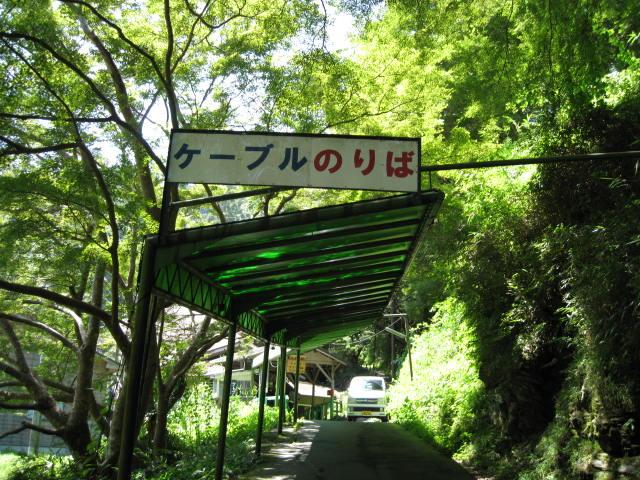 09-sum-yoshino10.JPG