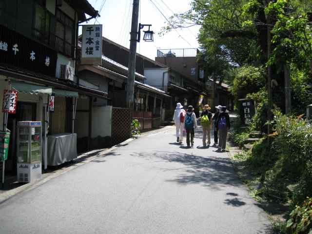 09-sum-yoshino12.JPG