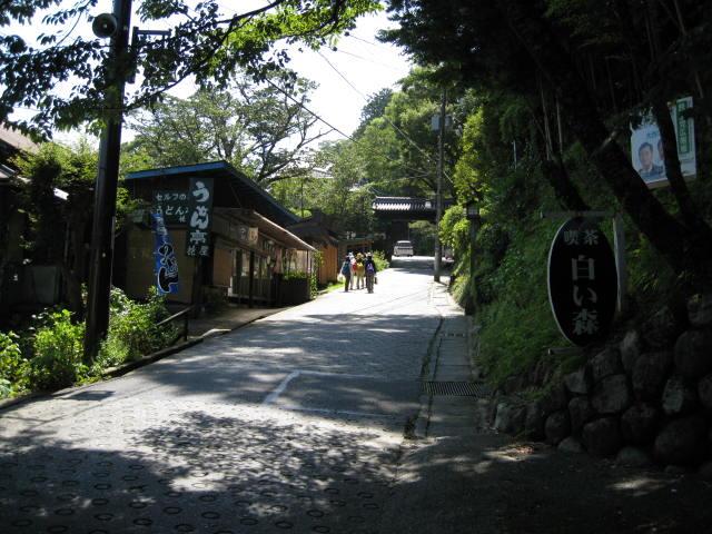 09-sum-yoshino14.JPG