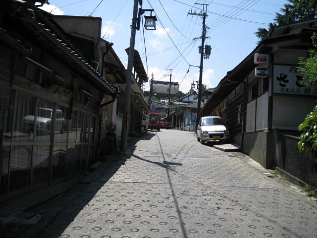 09-sum-yoshino15.JPG