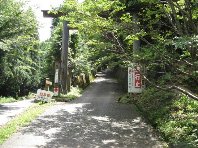 09-sum-yoshino41.JPG