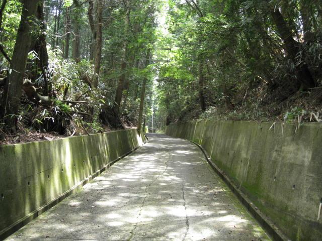 09-sum-yoshino42.JPG