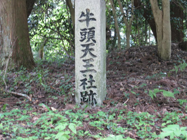 09-sum-yoshino63.JPG