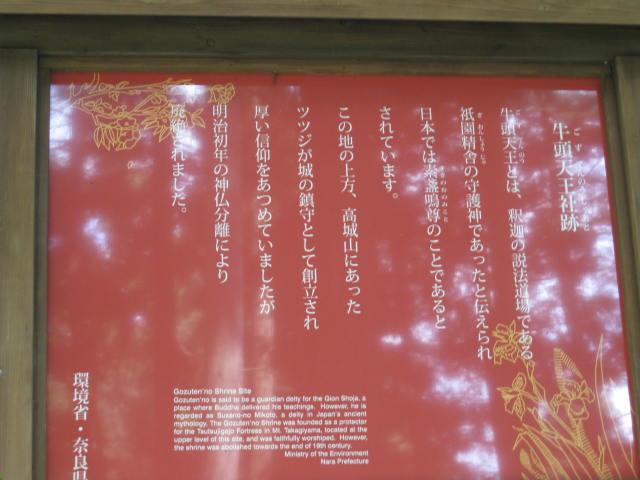 09-sum-yoshino64.JPG