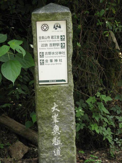 09-sum-yoshino75.JPG