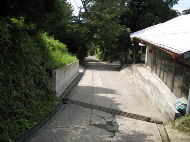 09-sum-yoshino81.JPG