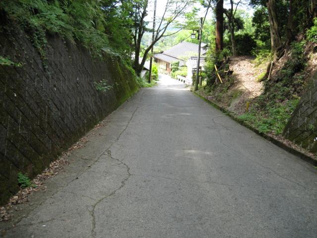 09-sum-yoshino82.JPG