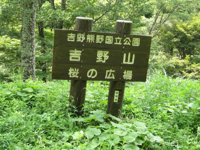 09-sum-yoshino89.JPG