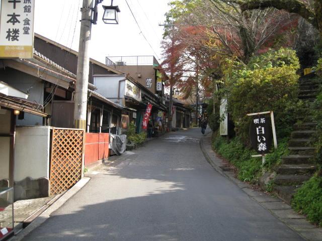 09-yoshino-koyo-20.JPG