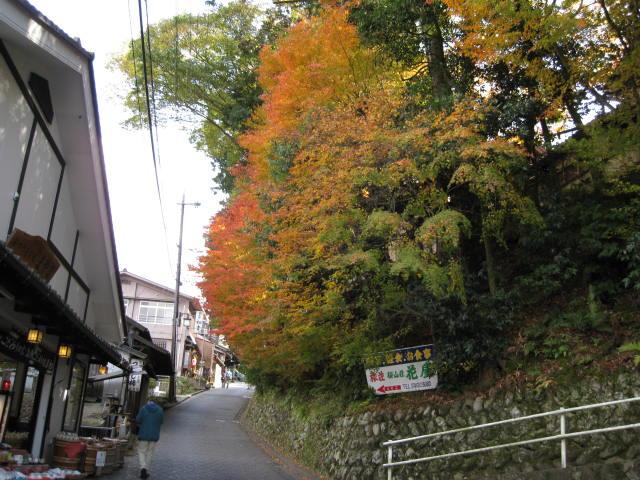 09-yoshino-koyo-21.JPG