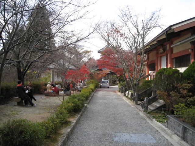 09-yoshino-koyo-23.JPG