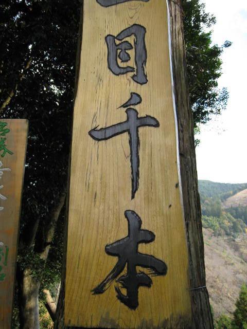 09-yoshino-koyo-32.JPG